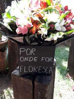 arranjos-florais-4