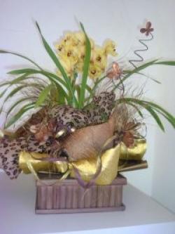 orquideas-armazem-das-flores-itu-06